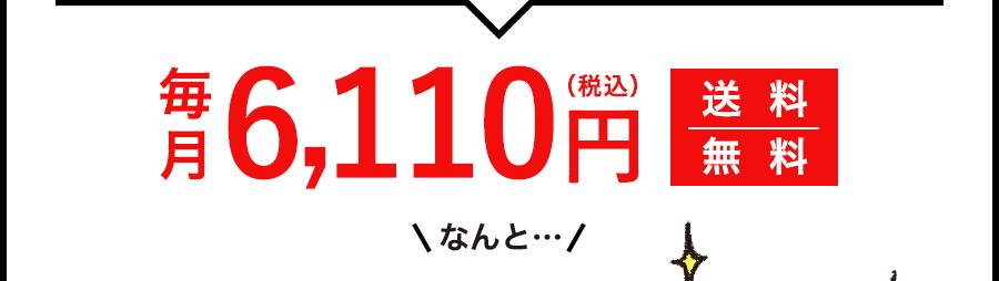 毎月6,110円(税込)送料無料