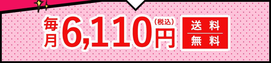 毎月10,180円(税込)送料無料