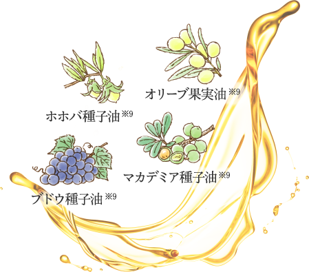 オリーブ果実油※9 ホホバ種子油※9 マカデミア種子油※9  ブドウ種子油※9