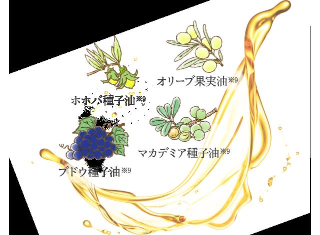 オリーブ果実油※9 ホホバ種子油※9 ブドウ種子油※9 マカデミア種子油※9